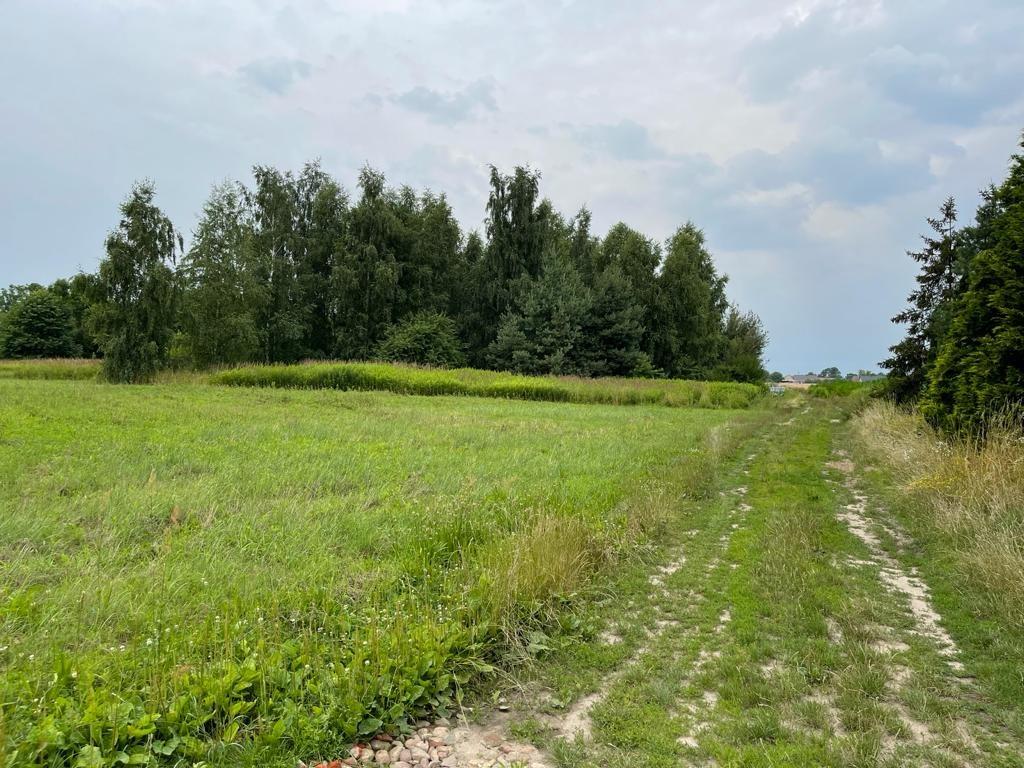 Działka budowlana na sprzedaż Biskupice Oławskie  1090m2 Foto 4