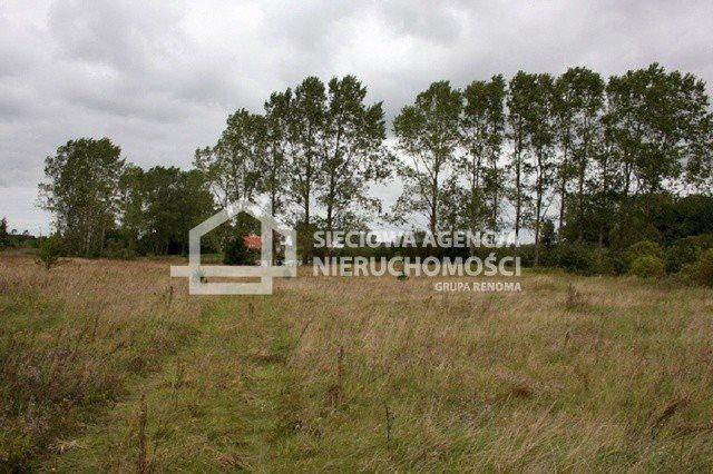 Działka budowlana na sprzedaż Cecenowo  62000m2 Foto 1