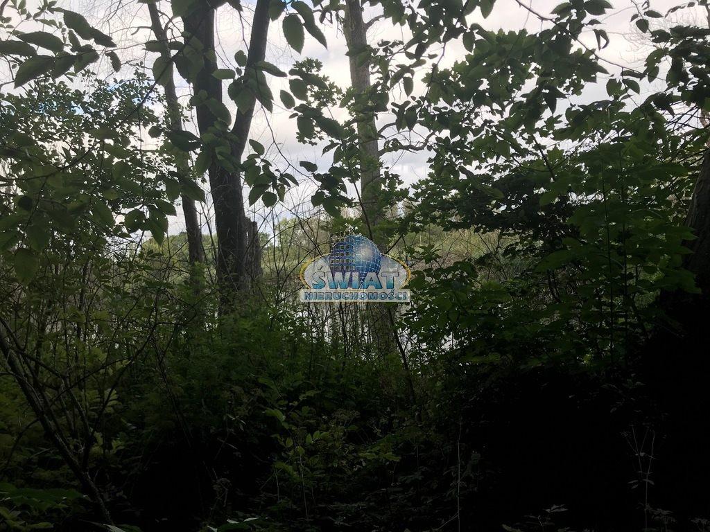 Dom na sprzedaż Sokoliniec  42000m2 Foto 3