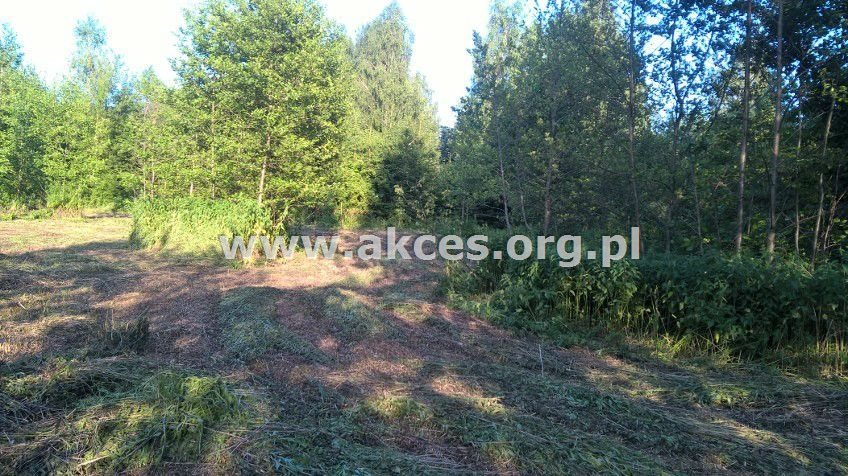 Działka budowlana na sprzedaż Jeziórko, Bursztynowa  1700m2 Foto 10