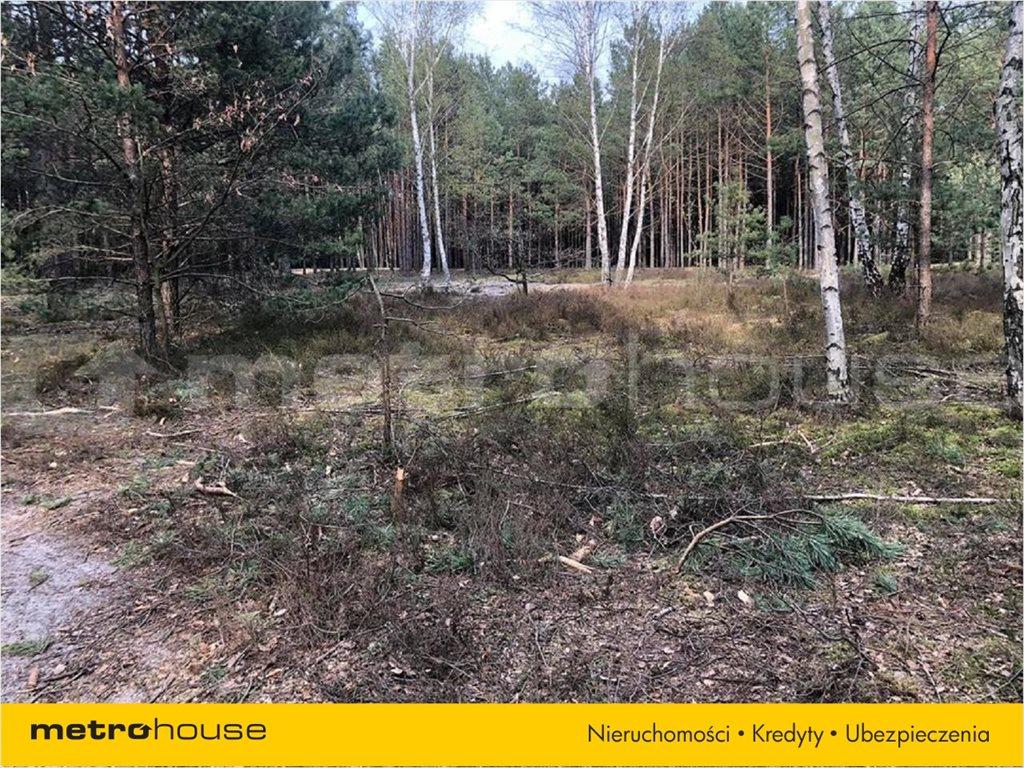 Działka leśna na sprzedaż Józefów, Józefów  8374m2 Foto 2