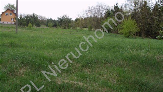 Działka rolna na sprzedaż Mszczonów  3600m2 Foto 1