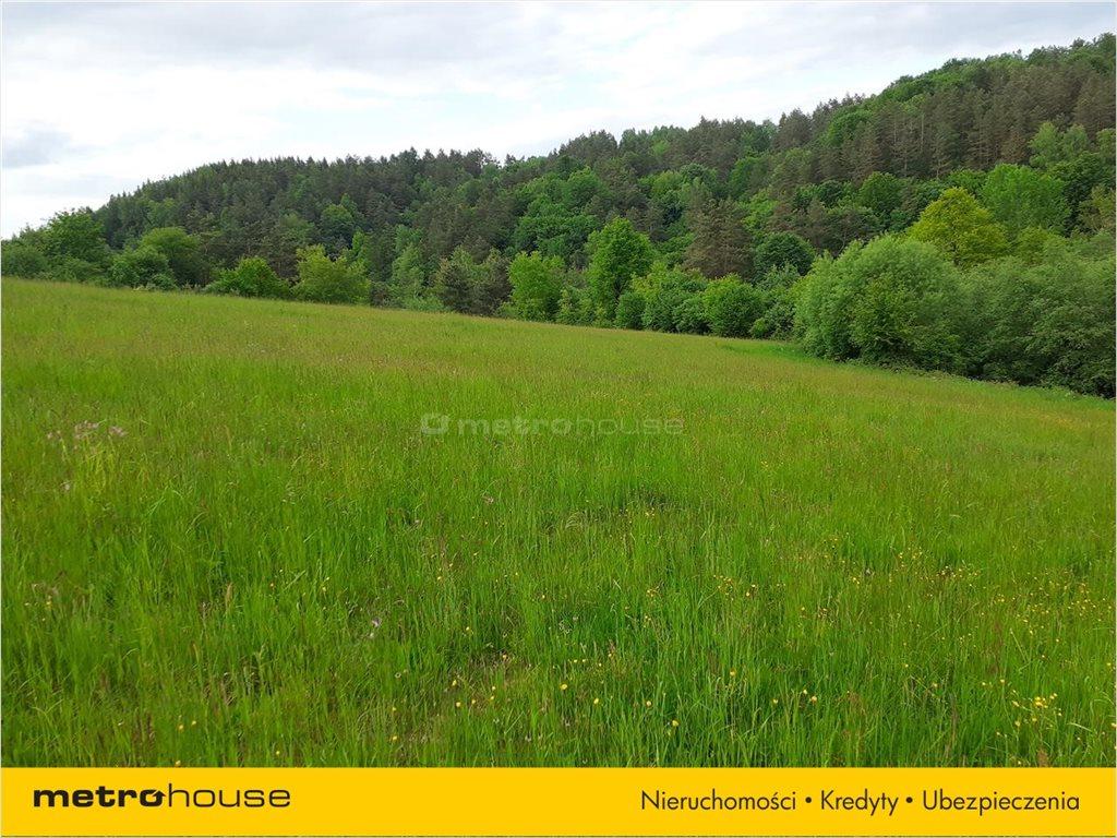 Działka rolna na sprzedaż Średnia Wieś, Lesko  12600m2 Foto 4