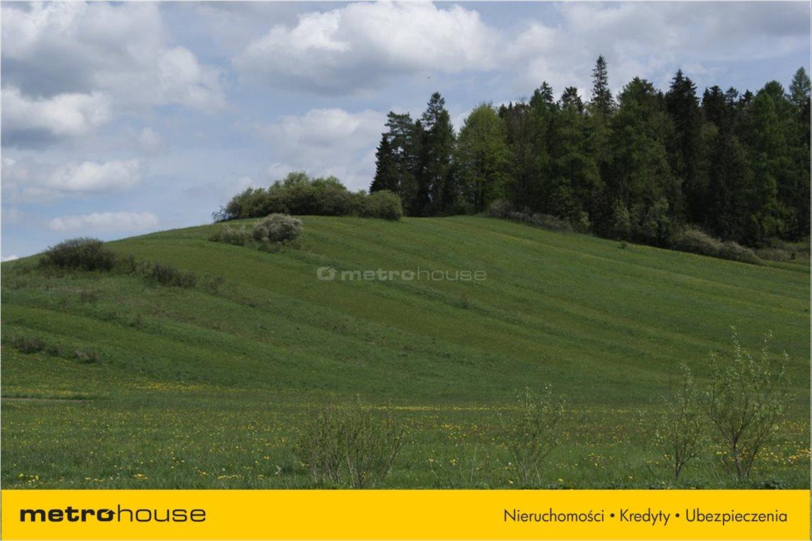 Działka rolna na sprzedaż Niedzica, Łapsze Niżne  1247m2 Foto 8