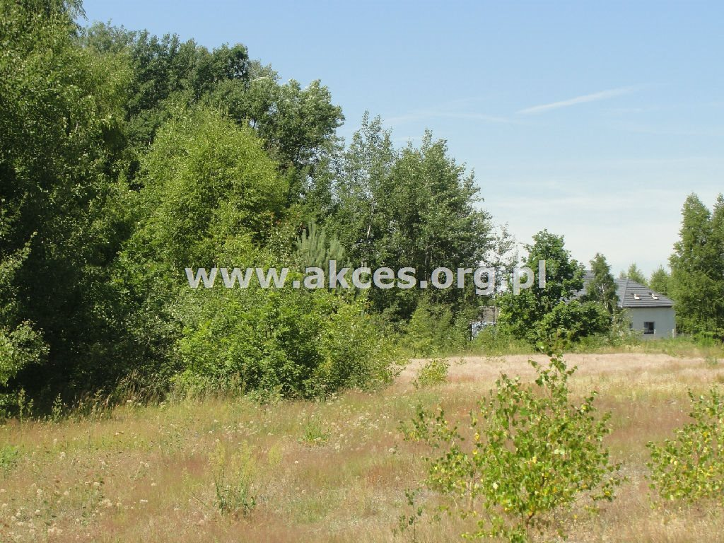 Działka rolna na sprzedaż Dobrzenica  40900m2 Foto 5