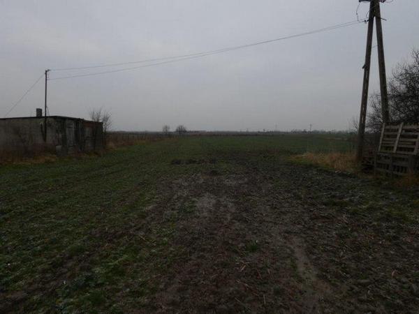 Działka rolna na sprzedaż Sicienko  20000m2 Foto 6