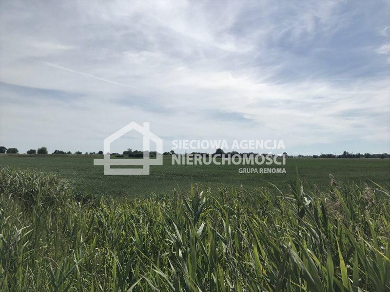 Działka rolna na sprzedaż Rybina  77672m2 Foto 4