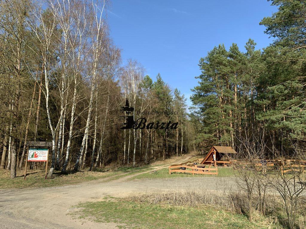 Działka budowlana na sprzedaż Wirów  5400m2 Foto 8