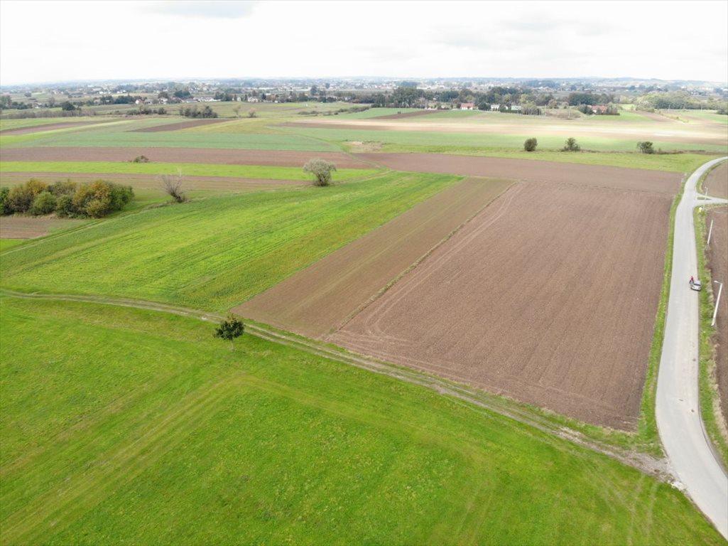 Działka rolna na sprzedaż Wola Batorska  3500m2 Foto 3