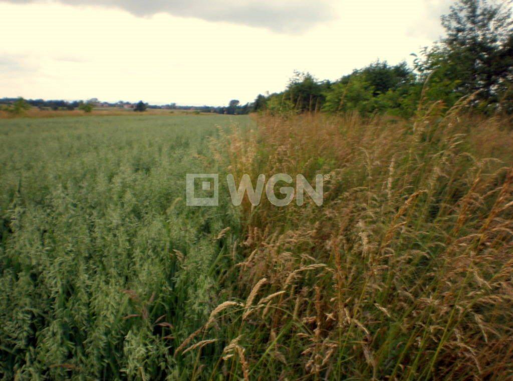 Działka rolna na sprzedaż Malawa, Malawa, Malawa  7500m2 Foto 5