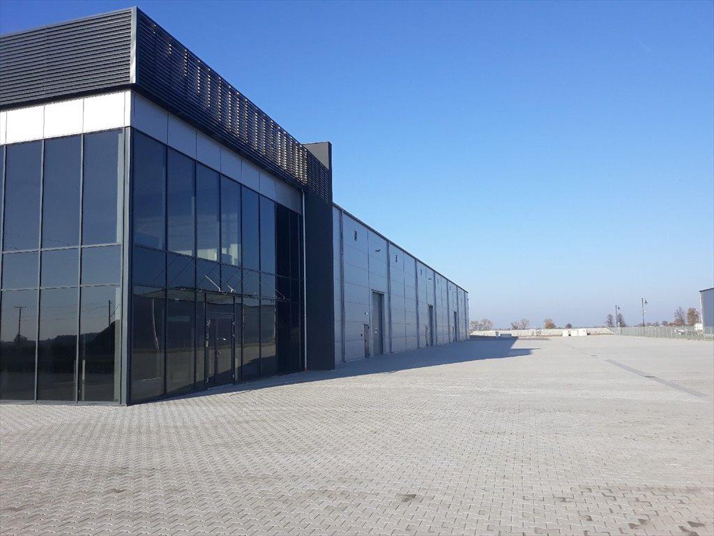 Lokal użytkowy na wynajem Kielce  2200m2 Foto 1