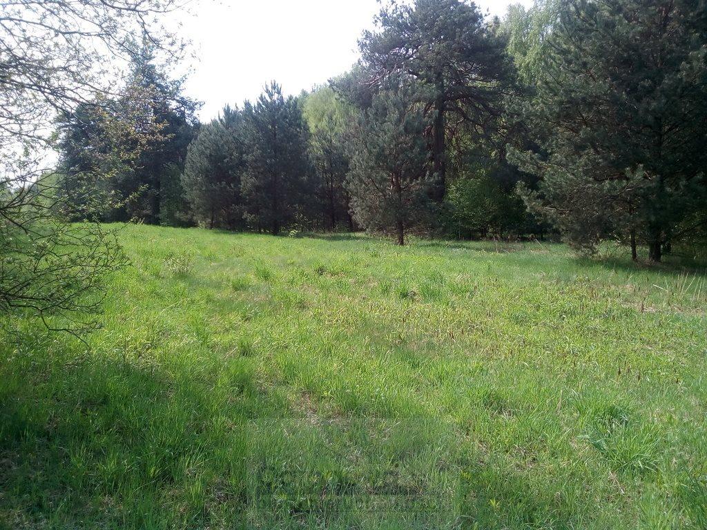 Działka rolna na sprzedaż Nasielsk  4573m2 Foto 2