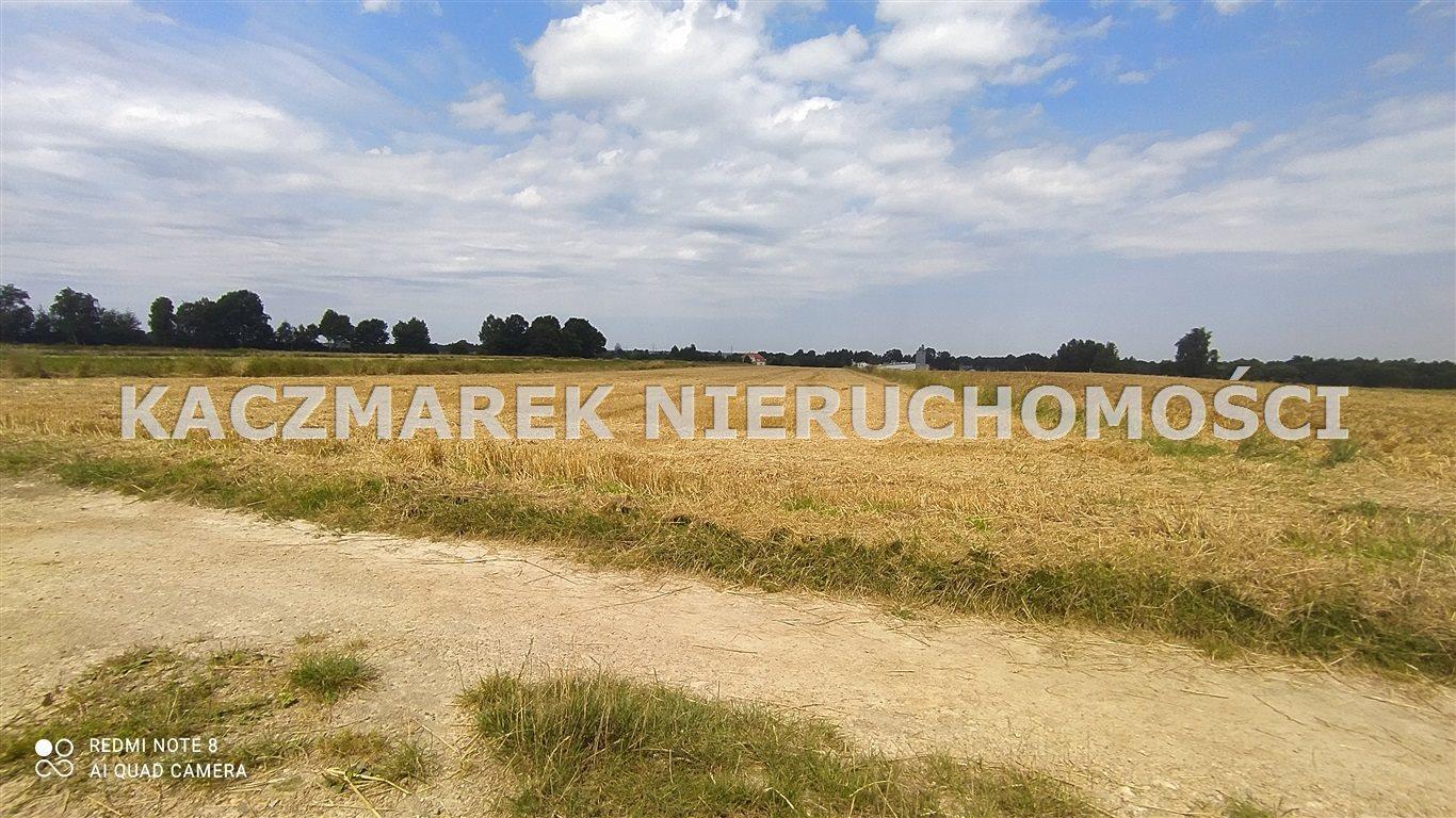 Działka rolna pod dzierżawę Ćwiklice  22060m2 Foto 3