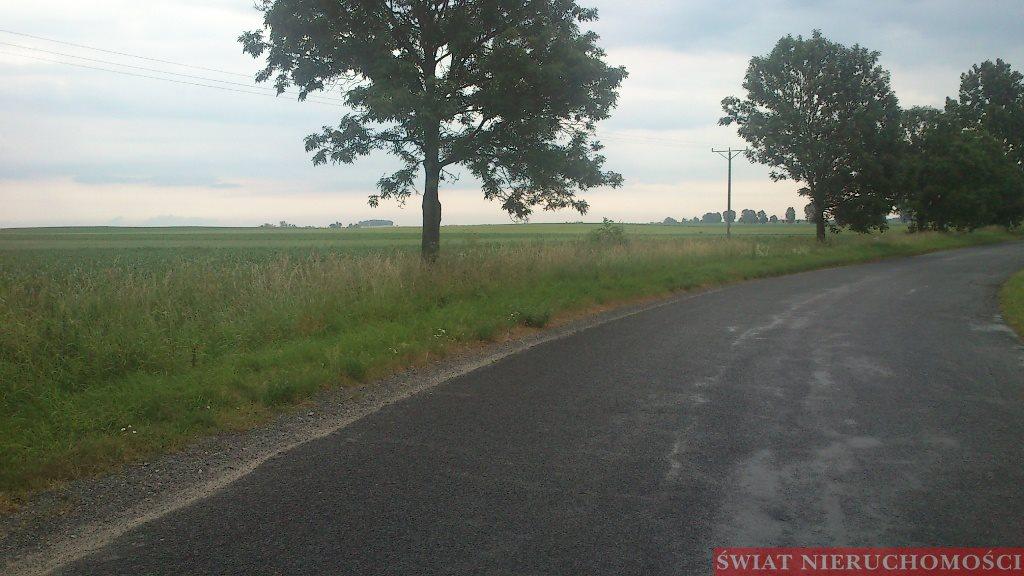 Działka rolna na sprzedaż Piotrowice  7800m2 Foto 1