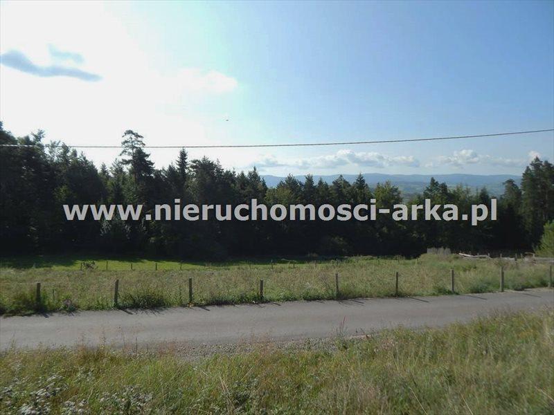 Działka budowlana na sprzedaż Mszana Dolna  7500m2 Foto 1