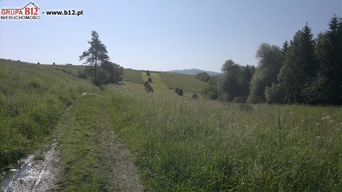 Działka budowlana na sprzedaż Rabka-Zdrój, Rabka-Zdrój, Gilówka  3300m2 Foto 1