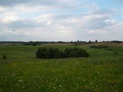 Działka rolna na sprzedaż Rogale  58200m2 Foto 2