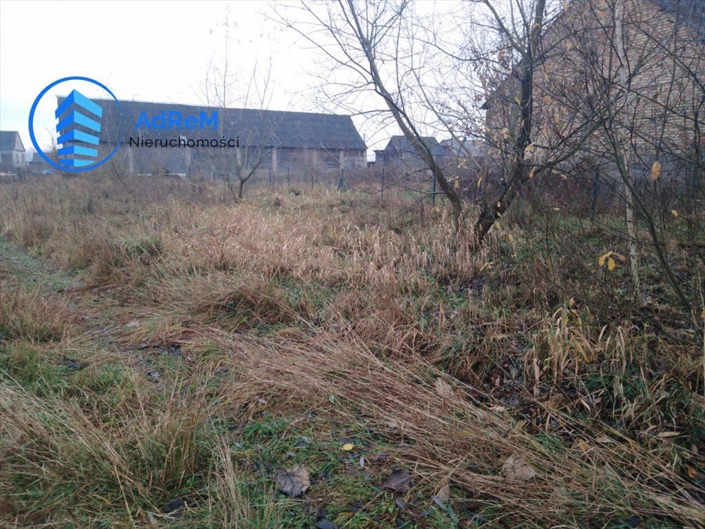 Działka siedliskowa na sprzedaż Słomianka  2000m2 Foto 1