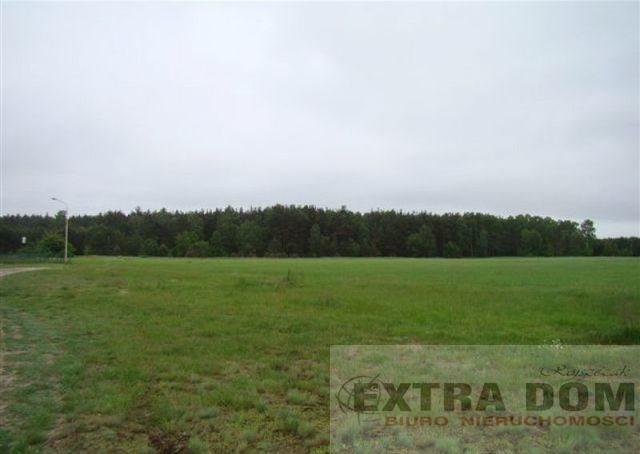 Działka inna na sprzedaż Komarowo  4600m2 Foto 1