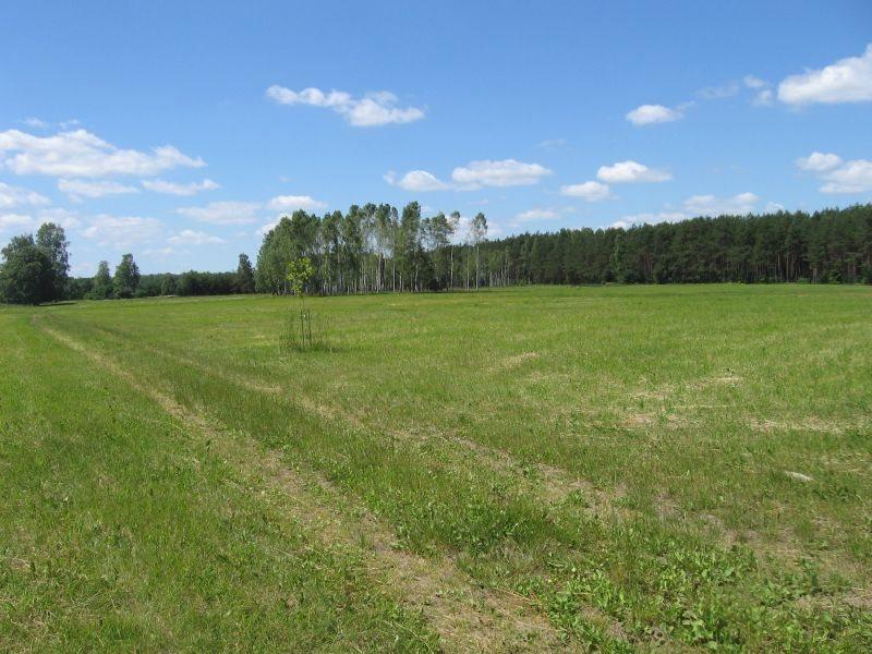 Działka rolna na sprzedaż Warkały  16606m2 Foto 4