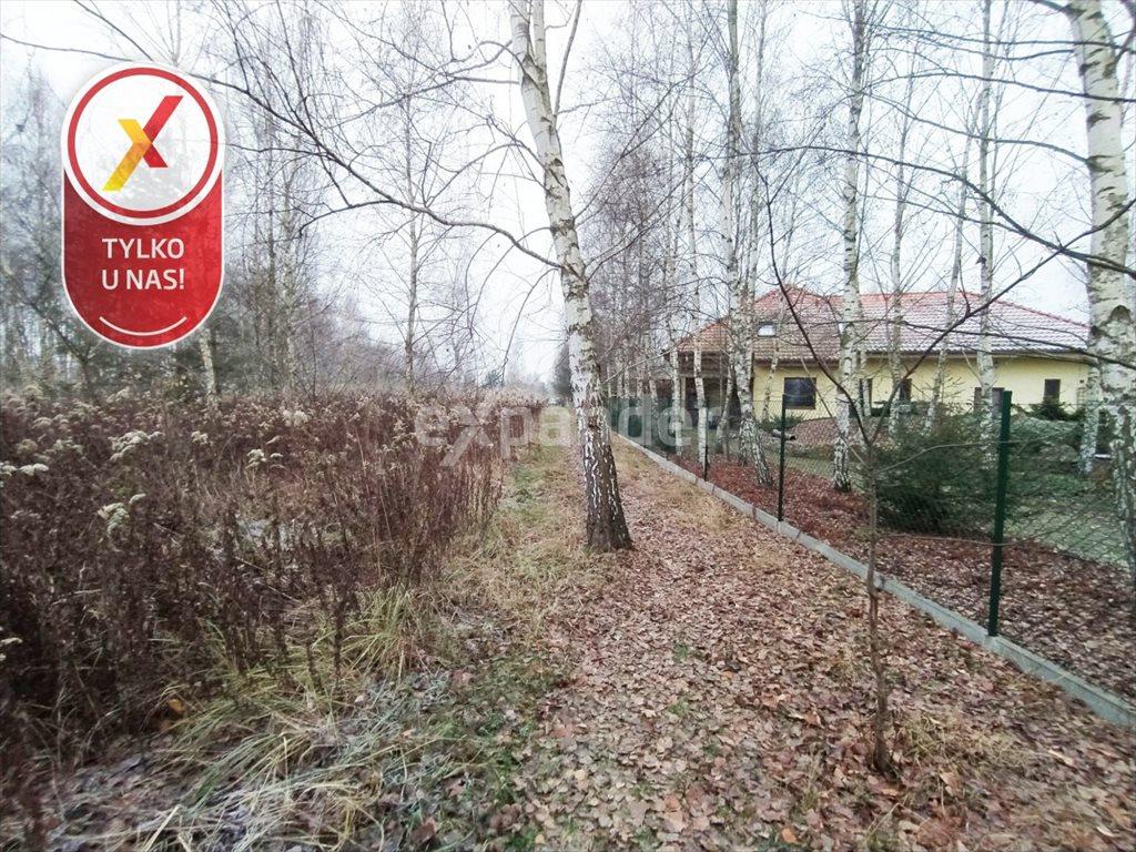 Działka budowlana na sprzedaż Miłoszyce, Bukowa  3041m2 Foto 3