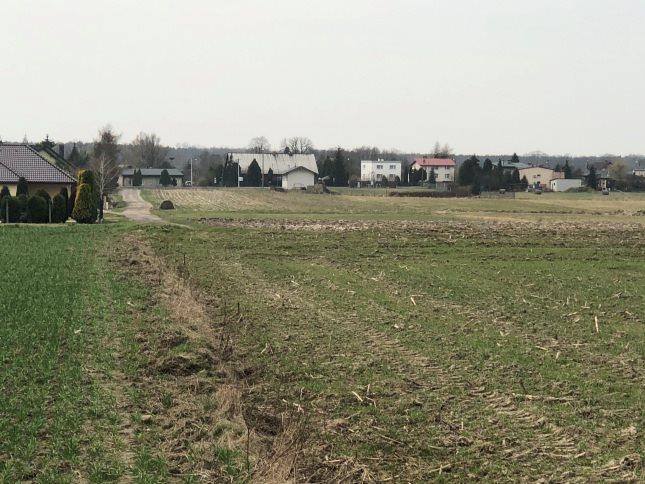 Działka rolna na sprzedaż Połomia  10300m2 Foto 2