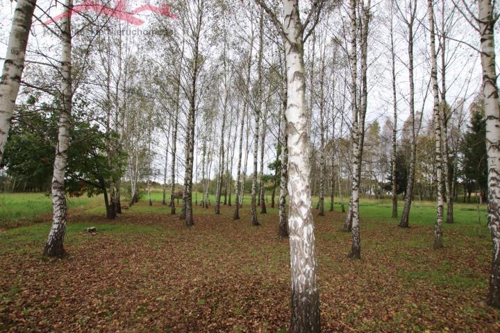 Działka budowlana na sprzedaż Potok  1200m2 Foto 1