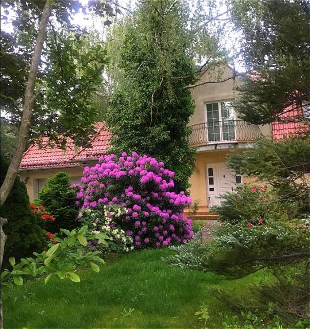 Dom na sprzedaż Podkowa Leśna  350m2 Foto 3