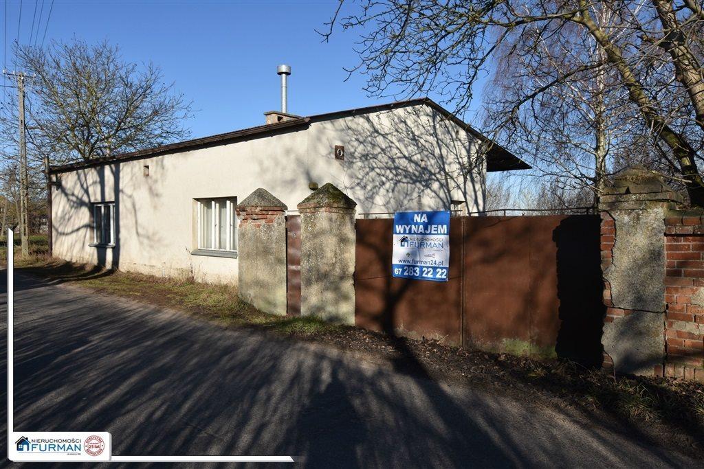 Lokal użytkowy na wynajem Adolfowo  177m2 Foto 1