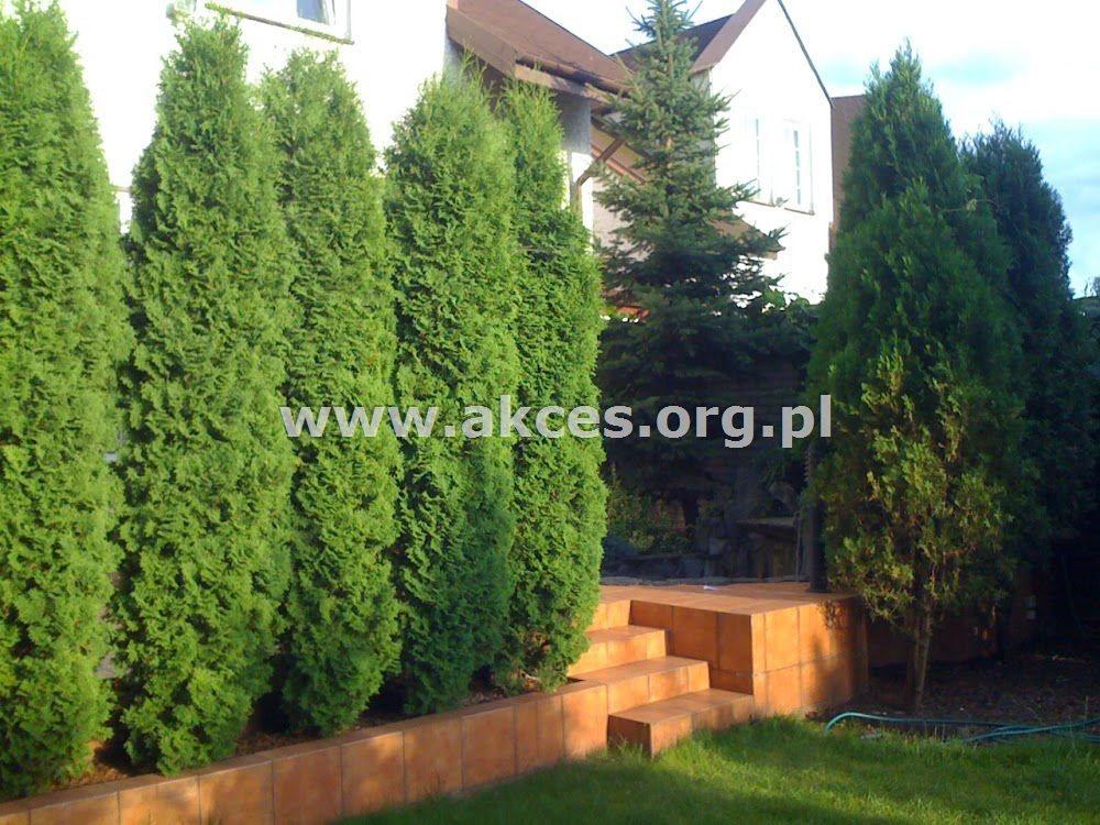 Dom na sprzedaż Warszawa, Targówek, Bródno  260m2 Foto 11