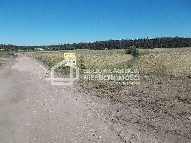 Działka inwestycyjna na sprzedaż Śliwice  14138m2 Foto 12