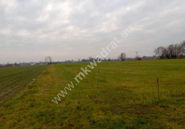 Działka siedliskowa na sprzedaż Chlebnia  21800m2 Foto 1