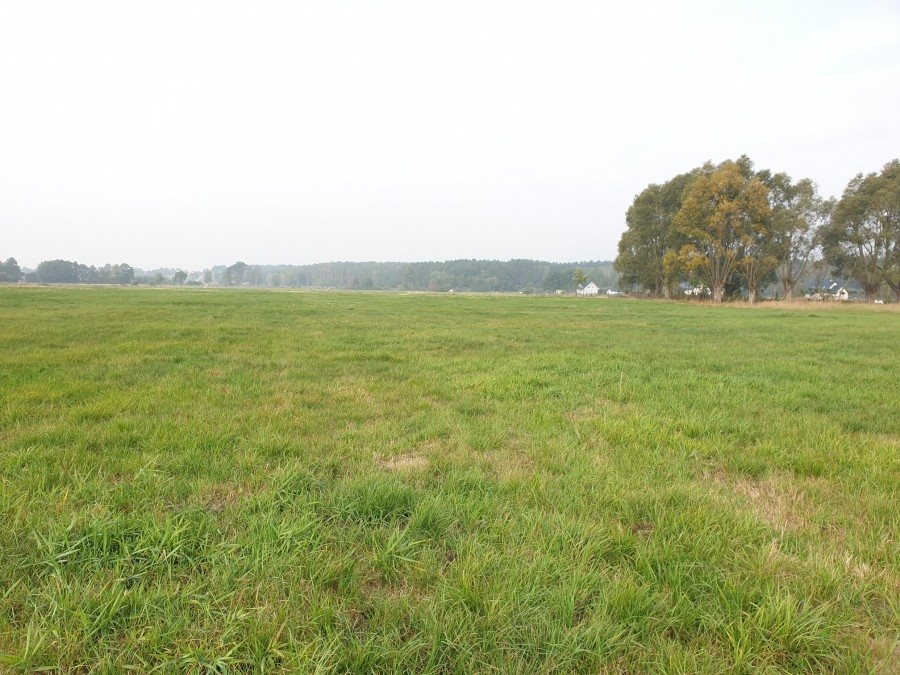 Działka rolna na sprzedaż Dobra, TRASZKI  3350m2 Foto 6