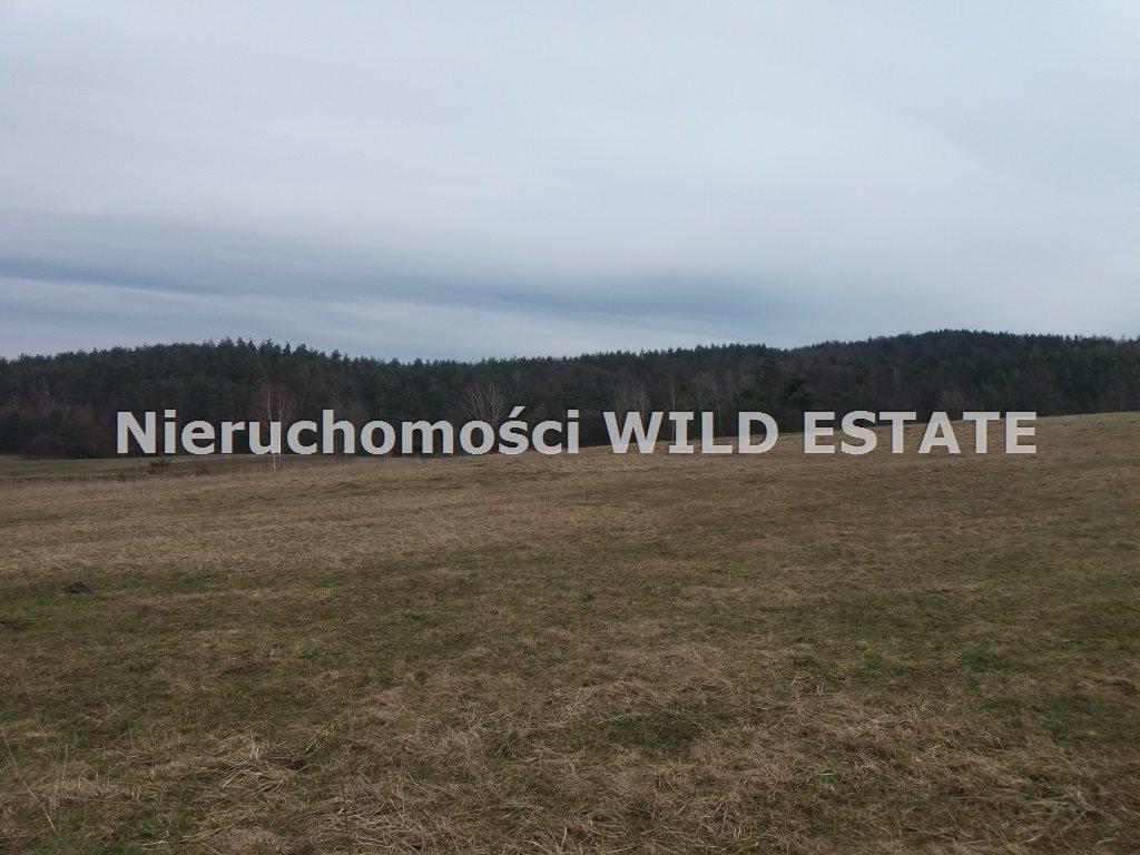 Działka rolna na sprzedaż Solina, Wola Matiaszowa  7900m2 Foto 4