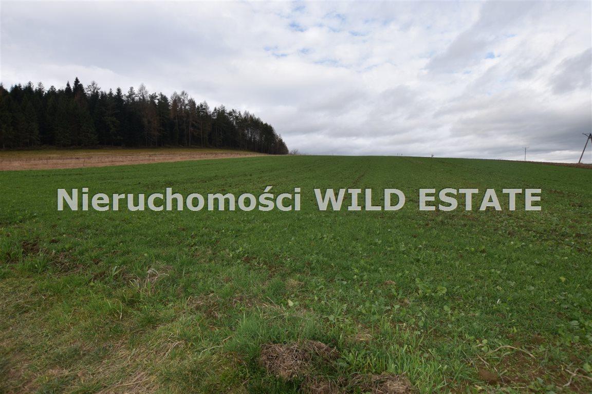 Działka rolna na sprzedaż Solina, Berezka  9520m2 Foto 2