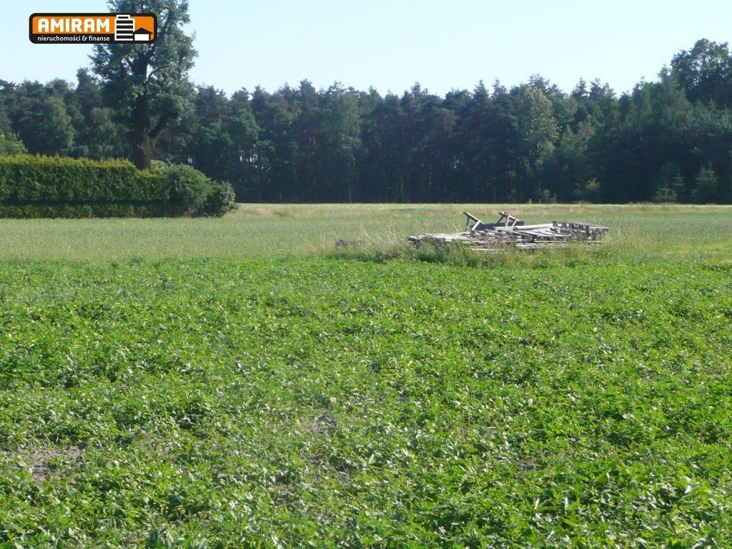 Działka budowlana na sprzedaż Studzienice  1000m2 Foto 2