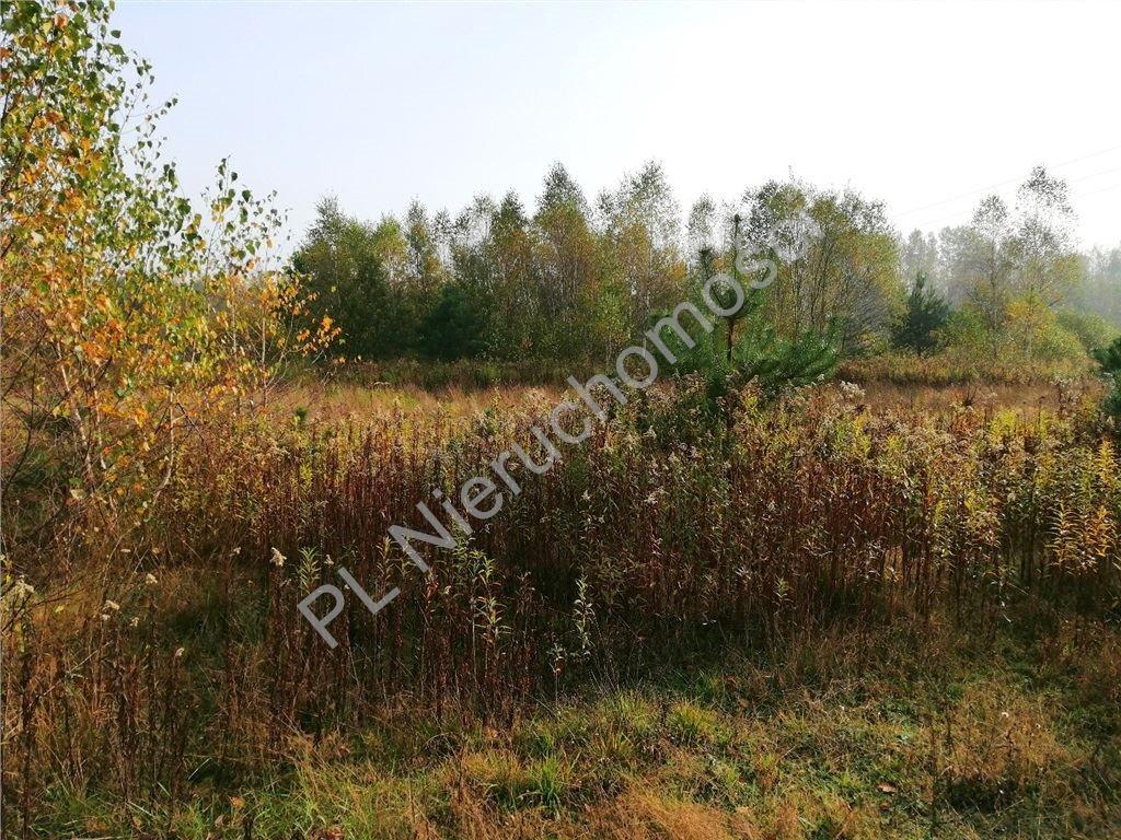 Działka rolna na sprzedaż Rakówiec  3896m2 Foto 3