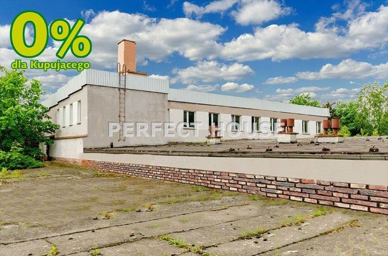 Lokal użytkowy na sprzedaż Zbrudzewo  1766m2 Foto 1