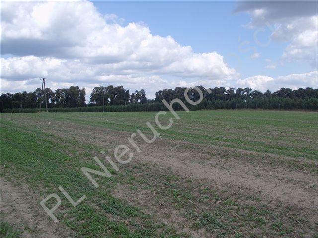 Działka rolna na sprzedaż Pasikonie  80347m2 Foto 4