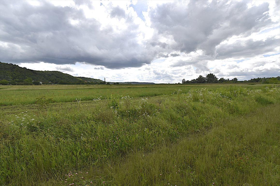 Działka rolna na sprzedaż Puławy  2900m2 Foto 4