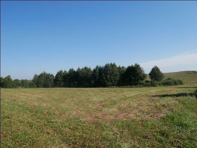 Działka rolna na sprzedaż Skolity  97248m2 Foto 11
