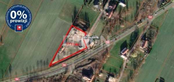 Działka inwestycyjna pod dzierżawę Brzeźnik, Brzeźnik  5541m2 Foto 2