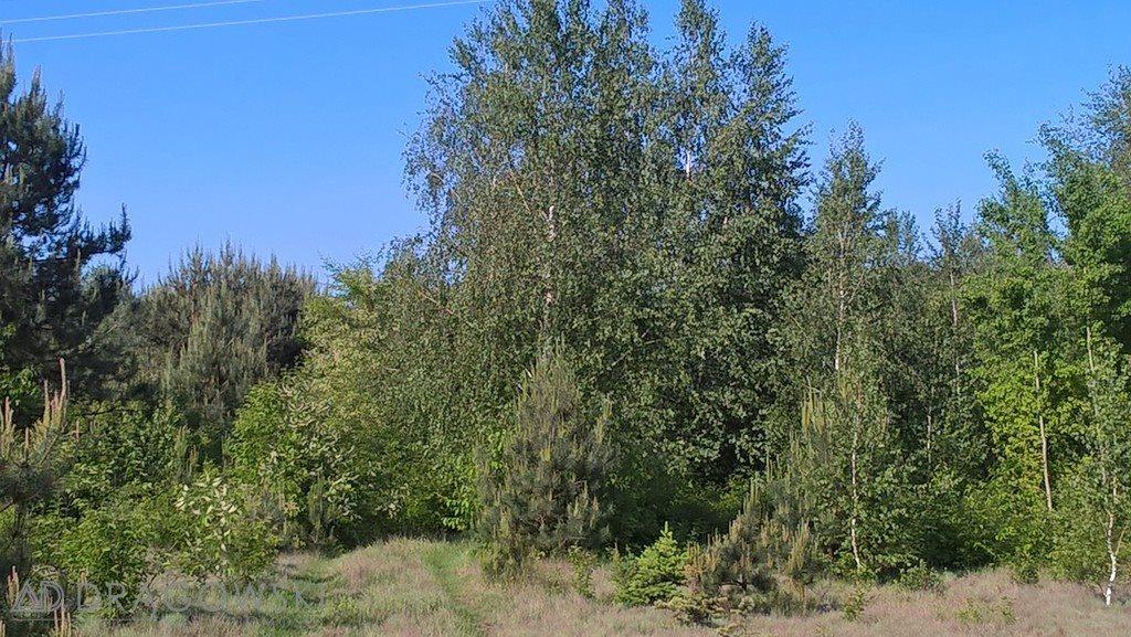 Działka rolna na sprzedaż Łękawica  11842m2 Foto 6