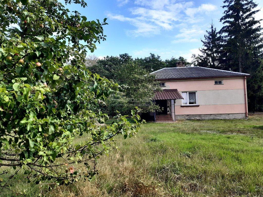 Dom na sprzedaż Wólka Kościeniewicka  90m2 Foto 3