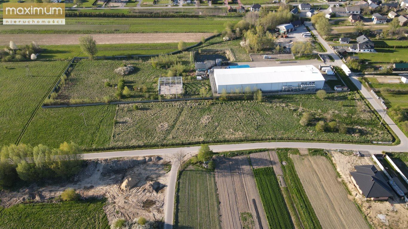 Działka budowlana na sprzedaż Frampol  10000m2 Foto 4