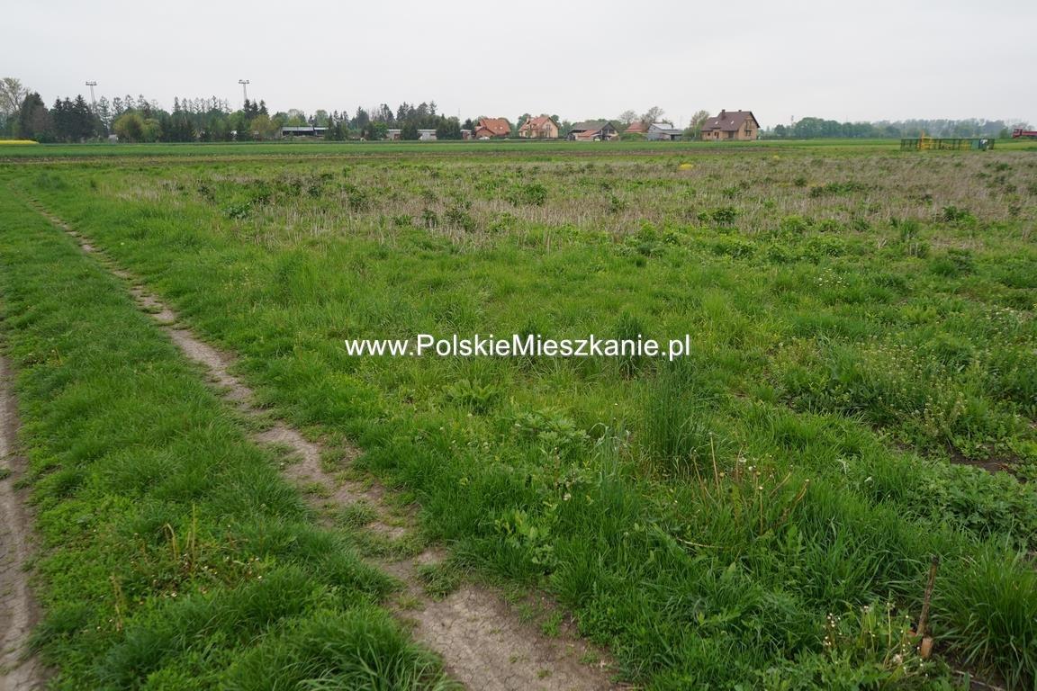 Działka rolna na sprzedaż Przemyśl, Krówniki  5500m2 Foto 9
