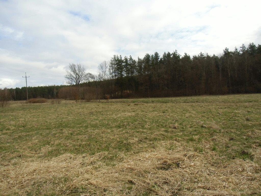 Działka rolna na sprzedaż Tawęcino  136800m2 Foto 5