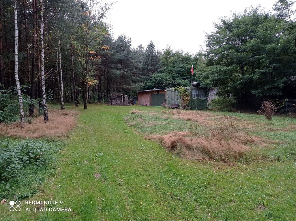 Działka budowlana na sprzedaż Dalików, Ostrów 1 a  3000m2 Foto 2
