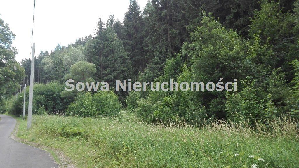 Działka inna na sprzedaż Mieroszów, okolice Mieroszowa  3900m2 Foto 8