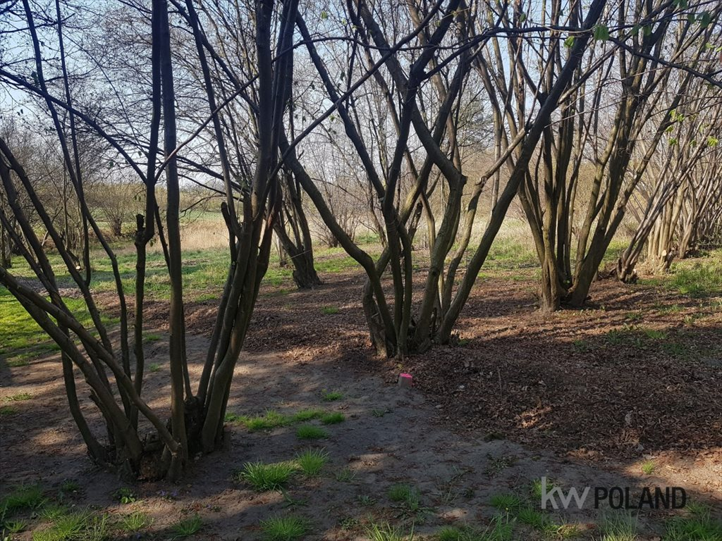 Działka rolna na sprzedaż Wyry, Łaziska  2047m2 Foto 4
